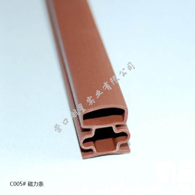 C005# Magnetic strip